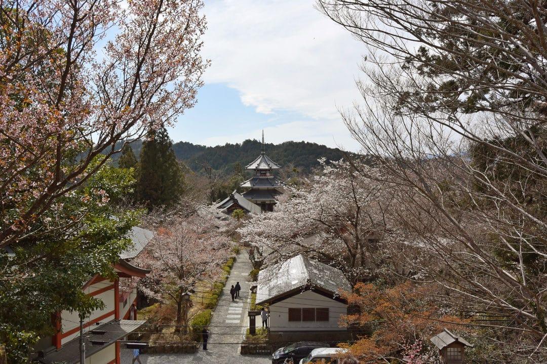 Yoshino Chogu Ruins