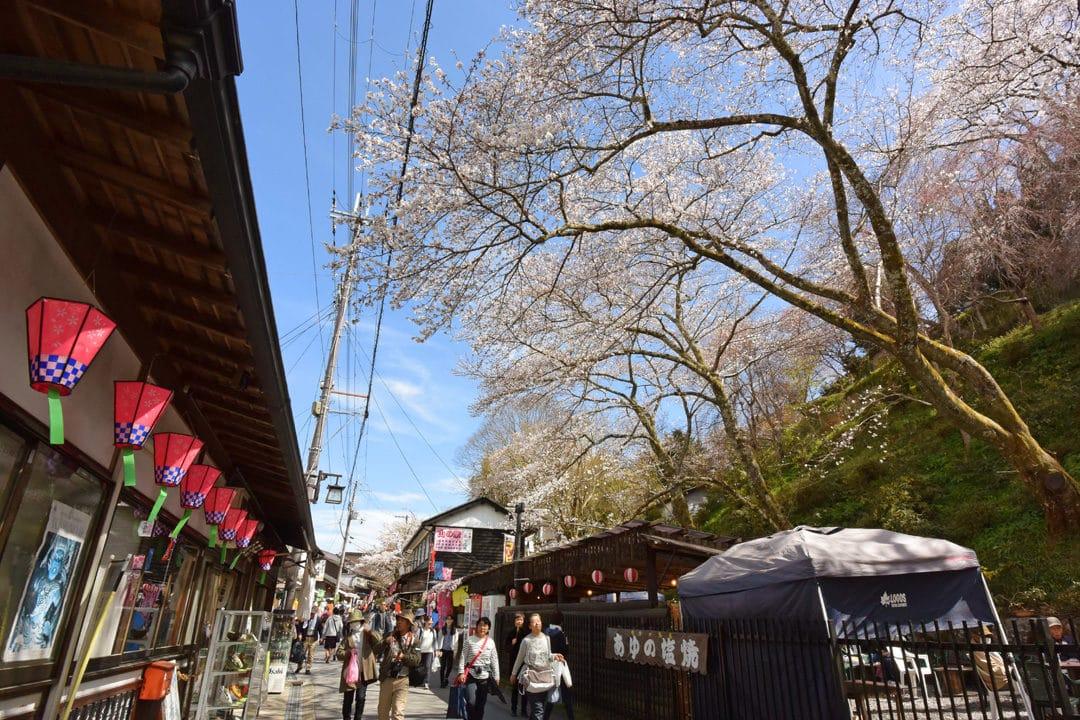 Street of Mount Yoshino