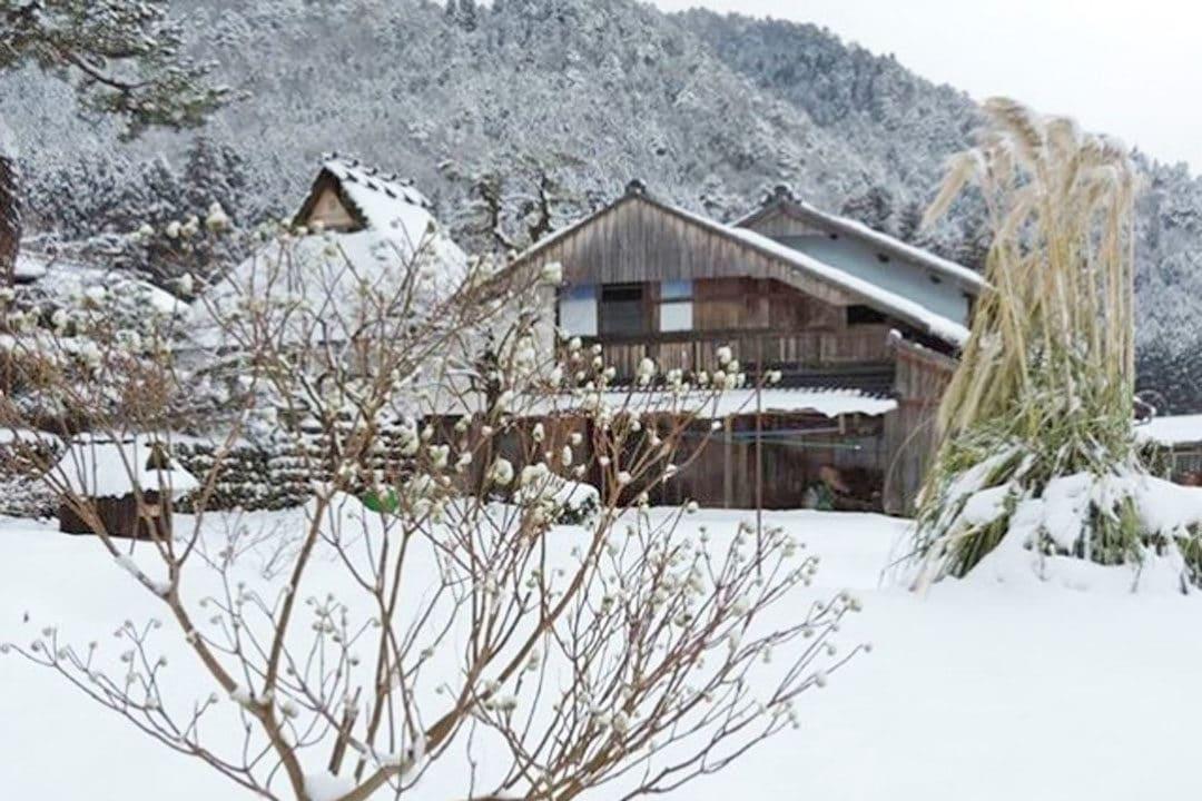 Snow in Kayabuki no Sato